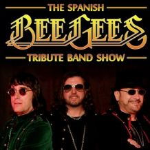 bee gees tribute.