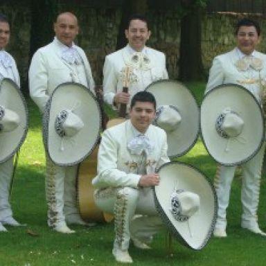agrupacion mariachi mexicolombia