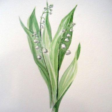 floristeria muguet