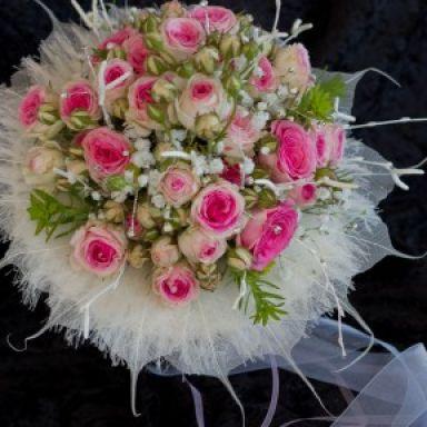 floriforma