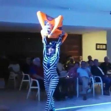 the acrobattys