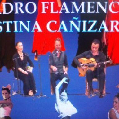cuadro flamenco cristina canizares