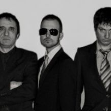 stupiditos banda tributo a dr feelgood .