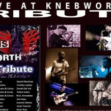 rock band williams tribute live at knebworth.