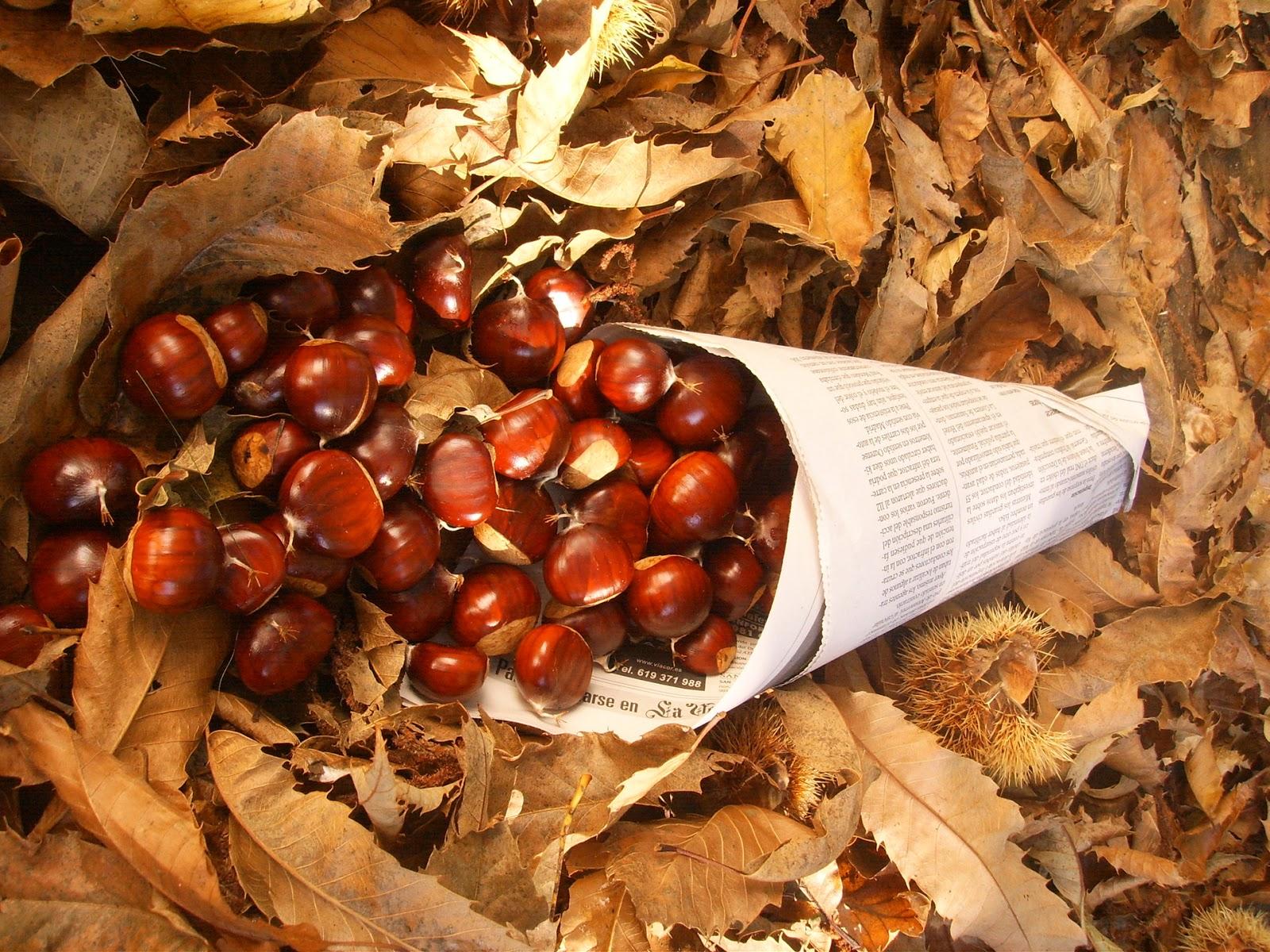 El magosto, la tradicional fiesta del otoño en Galicia