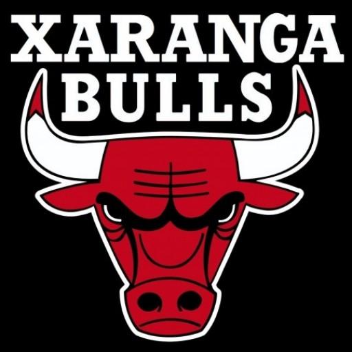 Xaranga Bulls