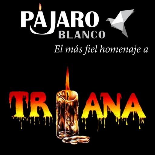 Pájaro Blanco - Tributo a Triana