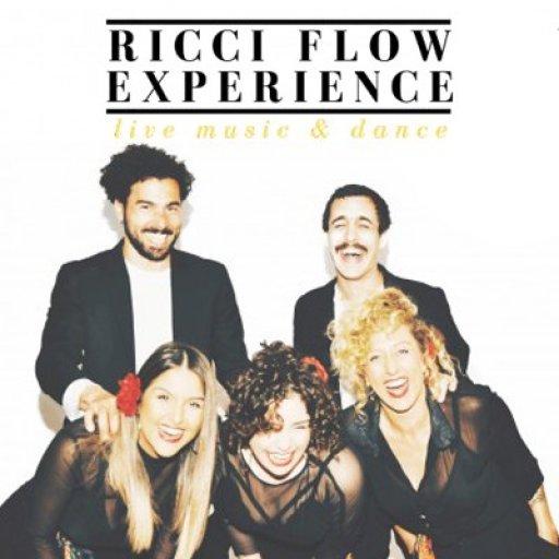 Ricci Flow Experience