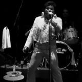 joe lewis elvis tribute 4412