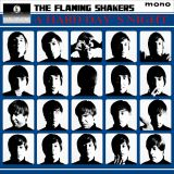 que noche la de aquel dia! the flaming shakers banda tributo a the beatles