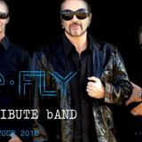 the fly u2 tribute band 46673