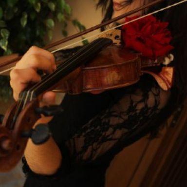 Música para Eventos. Violinista, Dúos, Tríos, Cuarteto de Cuerdas ...