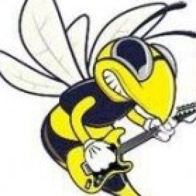 hornet?s band