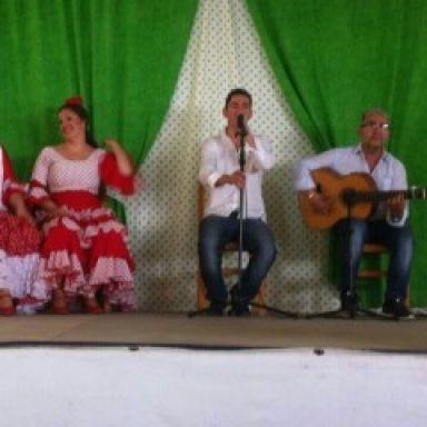 Flamenco jakaranda