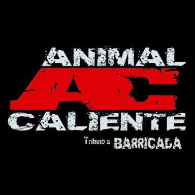 animales sueltos tributo a barricada