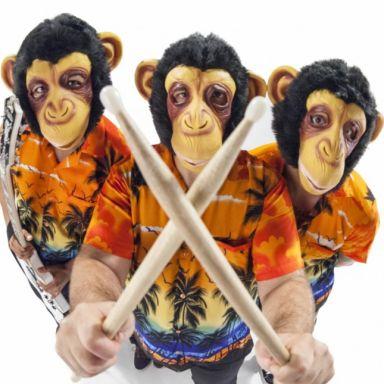 los monos voladores del sr burns