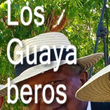 los guayaberos