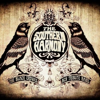 the southern harmony band the black crowes tribute