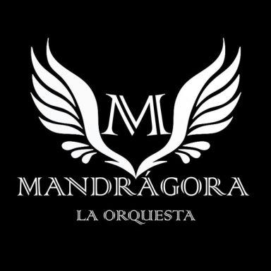 orquesta mandragora